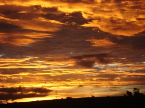 Um espetacular crepúsculo dourado, fotografado, sem truques, pela Márcia.