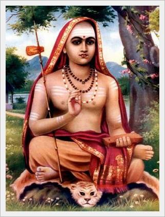 adi-shankaracharya novo