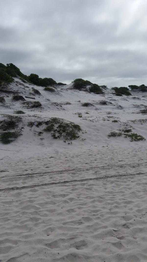 Marcas de pneus na areia